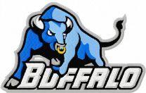 Buffalo Bulls logo machine embroidery design