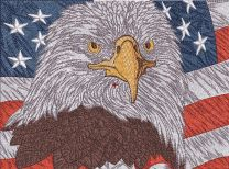 Eagle and American flag embroidery design