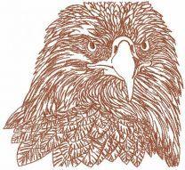 Eagle head sketch embroidery design