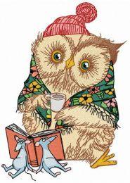 Granny owl's fairy tale