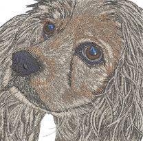 Grey spaniel muzzle embroidery design