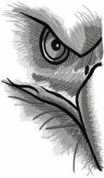 Half eagle gaze embroidery design