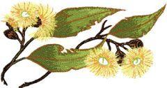 Gumnut flower embroidery design