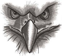 Eagle gaze embroidery design