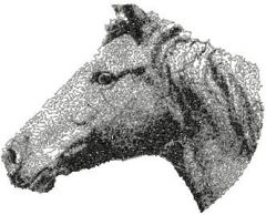 Horse 1 embroidery design