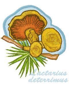 Lactarius Deterrimus embroidery design