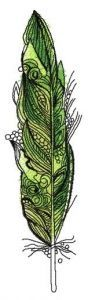 Parrot feather embroidery design