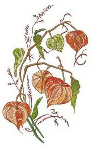 Physalis embroidery design 5