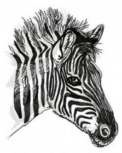 Zebra machine embroidery design 3