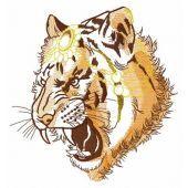 Raja's tiger