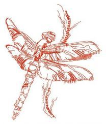 Dragonfly sketch embroidery design