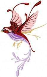 Fantastic Bird