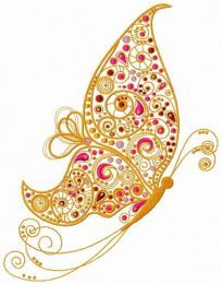 Fancy butterfly 5