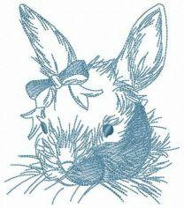 Fluffy rabbit