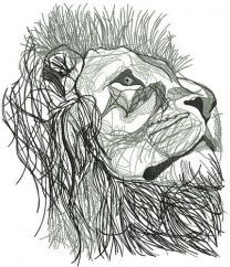 Lion from Narnia
