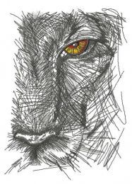 Lion's look