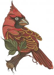 Northern cardinal sitting on tree branch