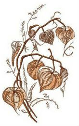 Physalis flower embroidery design