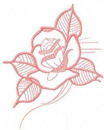 Pink rose 24