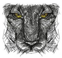 Predator's sketch