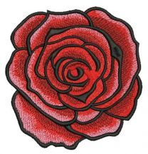 Red grand rose 2