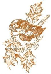 Robin on branch of holly 2