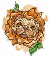 Rose costume for pug-dog