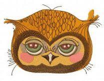 Shy owl 3