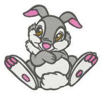 Shy Thumper