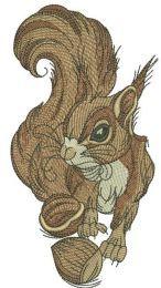 Squirrel with hazelnut 3