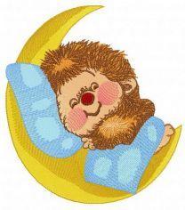 Sweet hedgehog's dreams