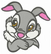 Timid Thumper