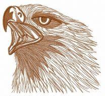 Wild eagle 2