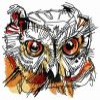 Wild owl head