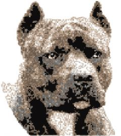 American Staffordshire Terrier embroidery design