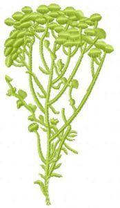 Autumn flower embroidery design