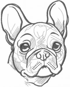 Bulldog greyscale sketch embroidery design