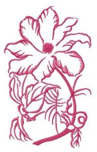 Clematis sketch embroidery design