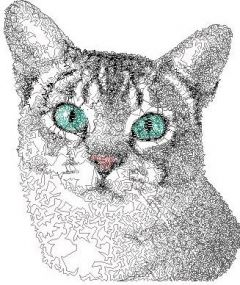 Grey home cat embroidery design