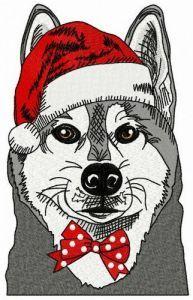 Husky before Xmas embroidery design