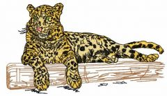 Jaguar 8 embroidery design