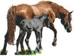Mother and foal embroidery design