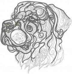 Rottweiler sketch embroidery design
