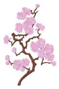 Sakura embroidery design