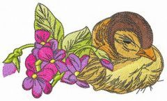 Sleepy duckling embroidery design