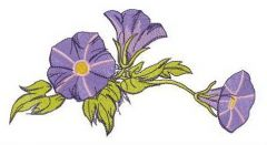 Slender bindweed embroidery design