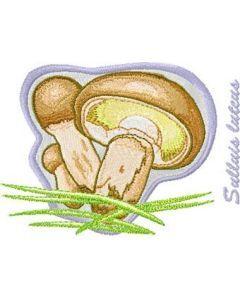 Suillus luteus embroidery design