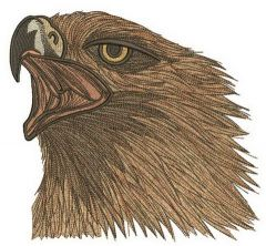 Wild eagle embroidery design